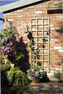 Garden Trellis - transform a garden and add interest