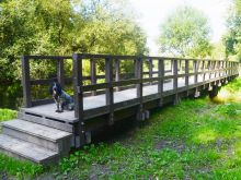 Boardwalk Installation in Amesbury, Wiltshire